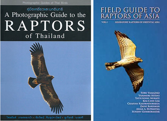 Raptor field guides by Dr. Chaiyan Kasorndorkbua